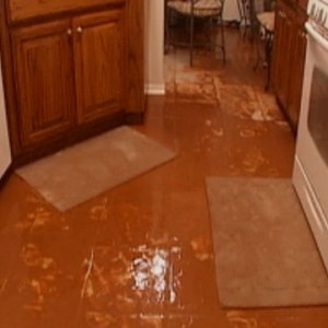 Grey Water Damage Clean Up