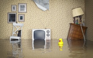 Floods are the most common and most expensive natural disaster in the Australia