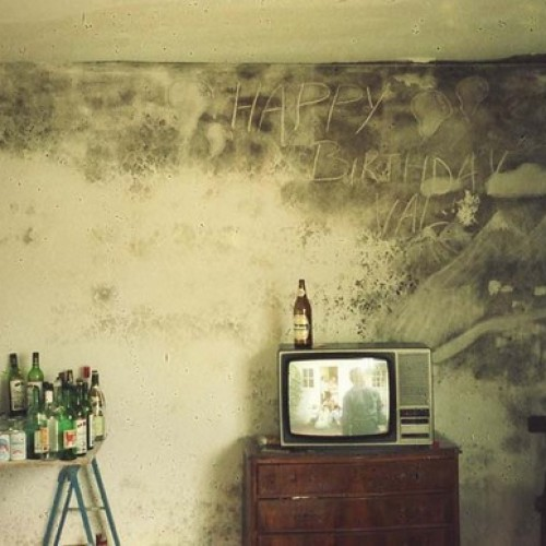 Mould Damage in a Home