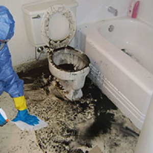 Sewage Cleanup Adelaide SA