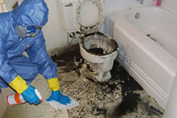 Sewage Contamination Cleaning Melbourne